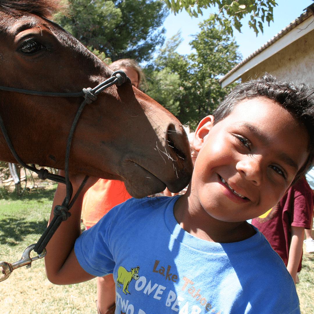 horseandboy_crop